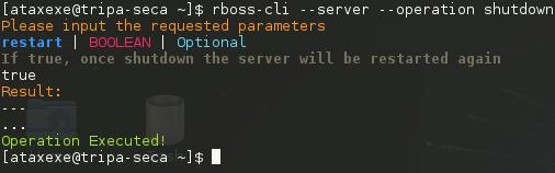 04-cli-execute-operation