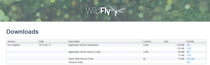 WildFly1